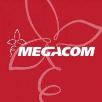 Мегаком
